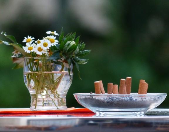 a dohányzás egészségpszichológiája - könyv
