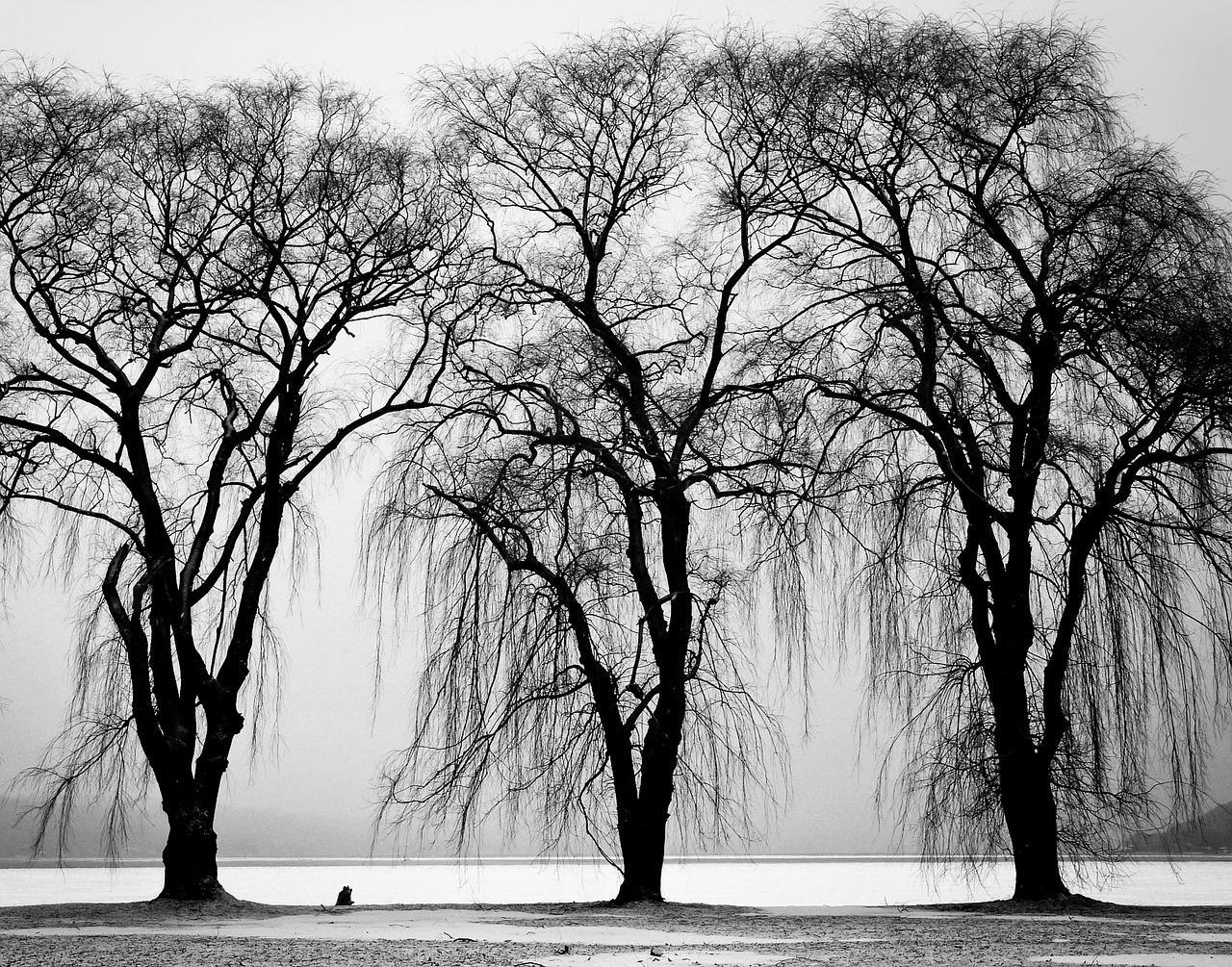 Téli éjszaka - téli depresszió